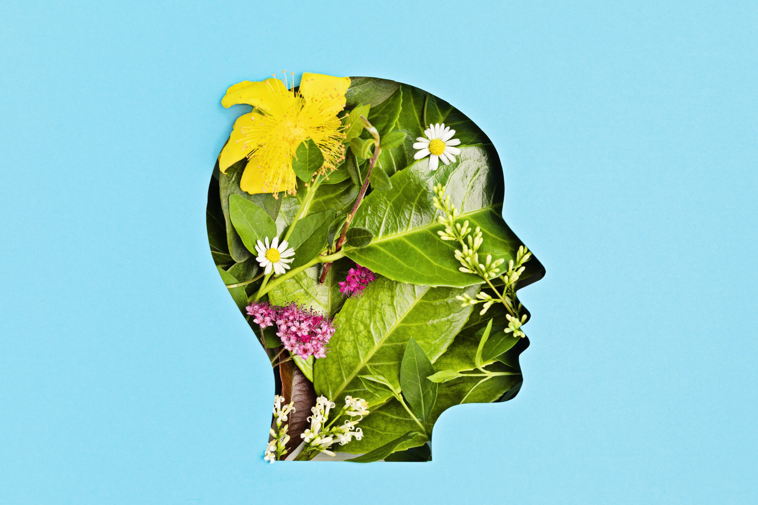 Make It Possible: How To Prevent Mental Illnesses